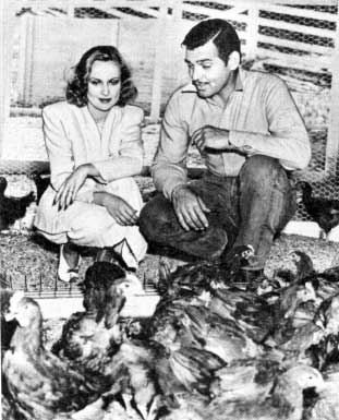 clark gable carole lombard ranch chickens